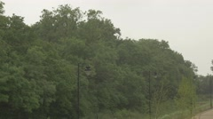 4k Trees and Lamp Posts in Massive Rain Storm Winter Stock Footage