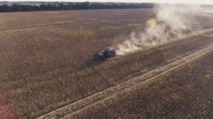 Harvesting sunflower. The camera flies around the combine, aerial video Stock Footage