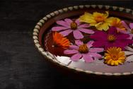 Flowers in a bowl of water Stock Photos