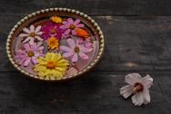 Flowers in a bowl with water and white flower on the table top Stock Photos