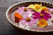 Flowers in a bowl Stock Photos