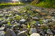 Beautiful view of countryside road. Focus on rocks Stock Photos
