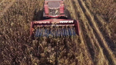 Combine harvests of sunflower. View from above, one can see the mechanism of the Stock Footage