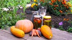 Autumn preserves and fresh organic vegetables Stock Footage