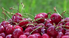 Hand take ripe cherry berries on sunlight in garden. Rotating turntable Stock Footage