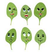 Emotions spinach. Set expressions avatar greens. lettuce leaf Good and evil.  Stock Illustration