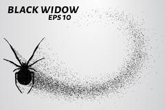 Black widow from the particles. The silhouette of the black widow of small ci Stock Illustration