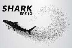 The shark from the particle. The silhouette of the shark is of little circles Stock Illustration