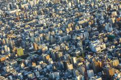 Aerial View of the Tokyo City, Japan Kuvituskuvat