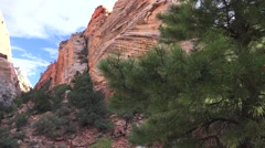 Slot canyon,Zion National park, landscape Stock Footage