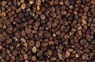 Decorticated cardamom seeds Stock Photos
