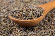 Dried lavender organic tea Stock Photos