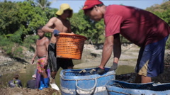 Fisherman Pouring Freshly Caught Fish From Basket Stock Footage