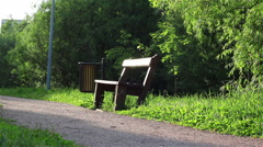 Summer park bench Stock Footage