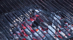 Barbecue Grill Stock Footage