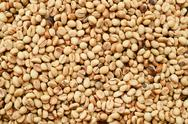 Close up of coffee beans Stock Photos