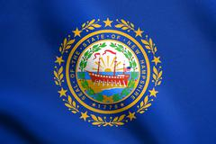 Flag of New Hampshire waving with fabric texture Stock Illustration