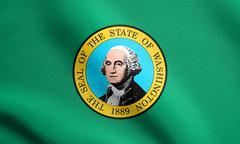 Flag of Washington state waving, fabric texture Stock Illustration
