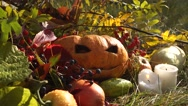 Still life with pumpkin for Halloween Stock Footage
