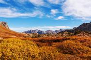 Autumn in Grand Teton Stock Photos