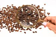 Female hand keepig magnifying glass over the coffee beans Stock Photos