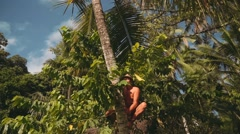 Balinese man climbing on top of palm tree, smiling Arkistovideo