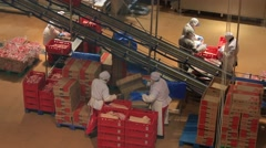 Industrial production of sausages. Working day on a manufacturing plant Stock Footage