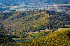 View of fall color in the Shenandoah Valley, from Skyline Drive in Shenandoah Stock Photos