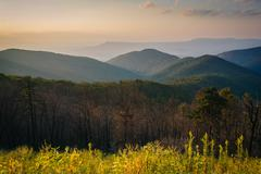 View of the Blue Ridge Mountains at sunset, in Shenandoah National Park, Virg Stock Photos