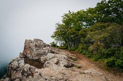 Water puddle on Little Stony Man Cliffs and the Appalachian Trail in fog, in  Stock Photos