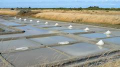 Salt marsh in the Ile de Re, France, EU, Europe Stock Footage