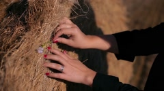 Girl's hands touched the haystack, red nails Stock Footage