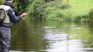 Fly-fisherman fishing from riverbank Stock Footage