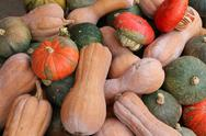 Red green and orange pumpkins for sale Stock Photos