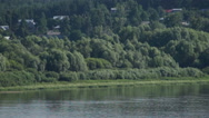 Summer forest at riverside of river Stock Footage