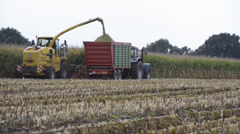 Corn harvester in the Corn crop for the agricultural sector Stock Footage