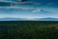Just a beautiful Addo Landscape Stock Photos