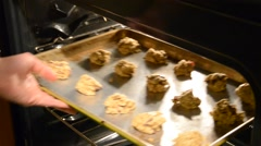 Placing Cookies in Oven Stock Footage