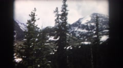 1962: forest mountain snow cold covered huge pine NEW YORK Stock Footage
