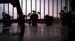 A view of a purple storm from a top floor. Rain. Strong wind. Flower petals Stock Footage