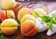 Fresh peaches Stock Photos