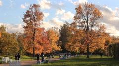 Autumn mood, autumn landscape. Sunny day in autumn park. Stock Footage