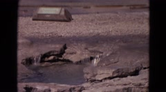 1967: sparkling water is falling to the pothole in a weak river YELLOWSTONE Stock Footage