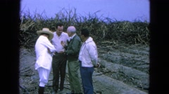 1965: four men standing outside in a small circle talking MEXICO Stock Footage