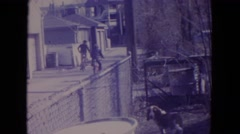 1972: person riding bike past dog in fenced in yard with squirrel in tree above Stock Footage