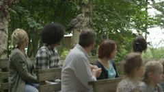 4K Families visiting a falconry centre watch as a grey owl takes flight Stock Footage