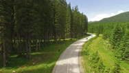 Camera flying on forest road in Slovenia Stock Footage