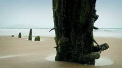 Weathered Shipwreck On Beach Stock Footage