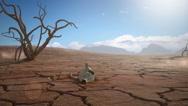 Desert Timelapse Stock Footage