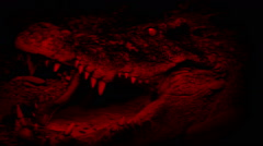 Blood Red Crocodile Opens Mouth Abstract Stock Footage